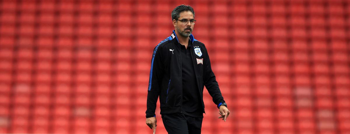 Hecking oder Wagner - welcher Trainer besser zu Schalke passt
