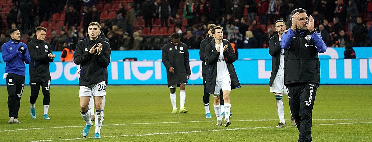 Trainer David Wagner FC Schalke 04 Bundesliga