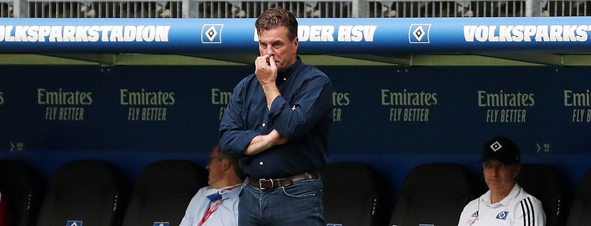 Dieter Hecking HSV-Trainer