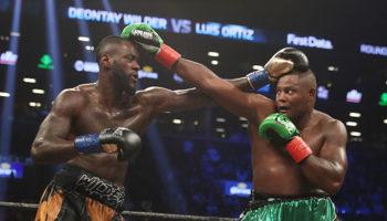 Wilder – Ortiz : revanche de poids lourds