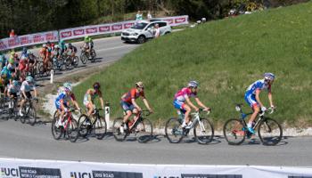 Cote Mondial Cyclisme : Alaphilippe, favori numéro un des pronostics.