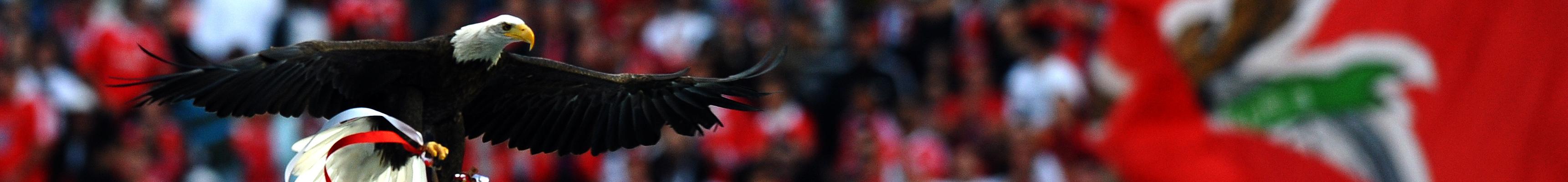 Benfica-Eintracht, quale aquila volerà più in alto?