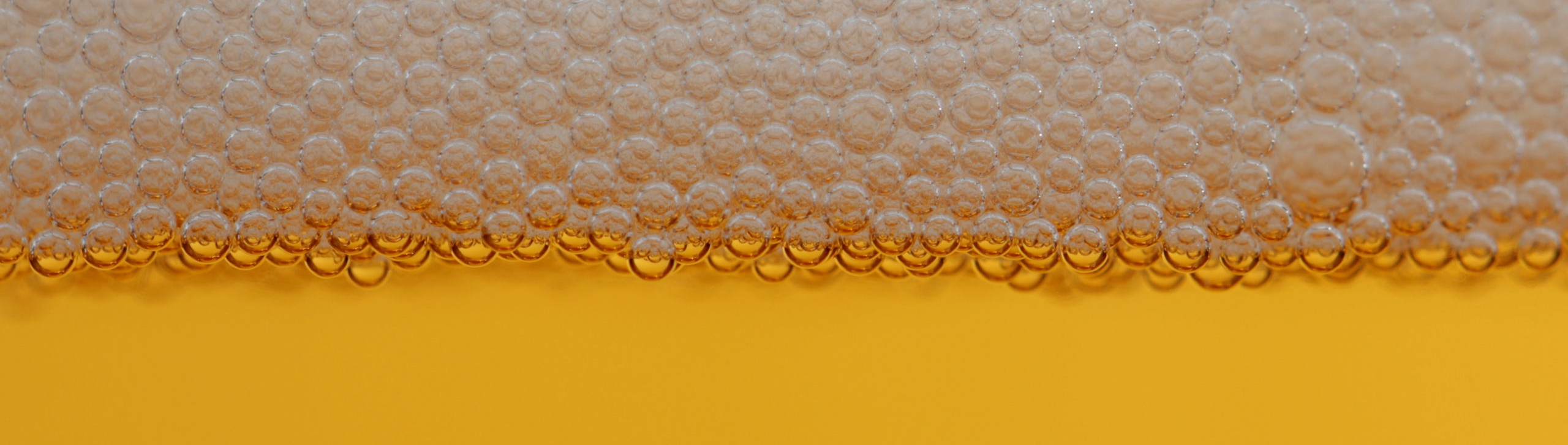 Eventi sportivi di oggi 30 marzo: un lunedì a tutta... beer!