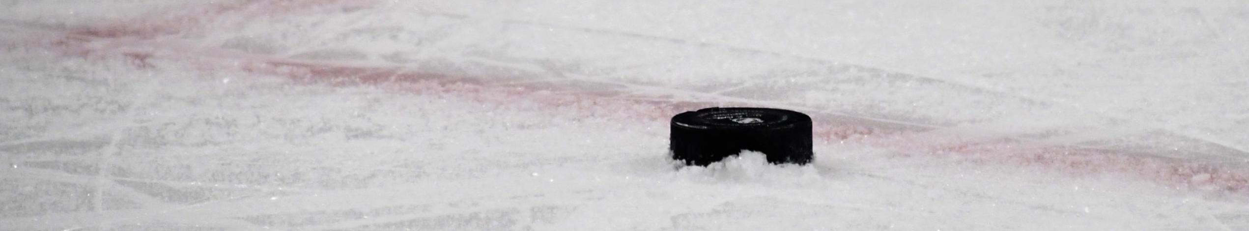 Eventi sportivi di oggi 31 marzo: basket e hockey su ghiaccio