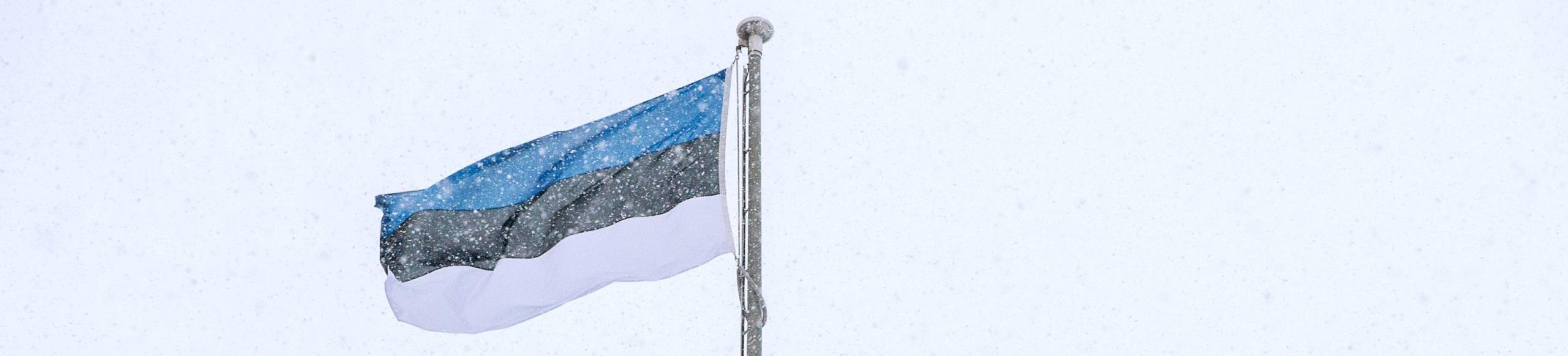 Tutto sul campionato di calcio dell'Estonia: come funziona la Meistriliiga